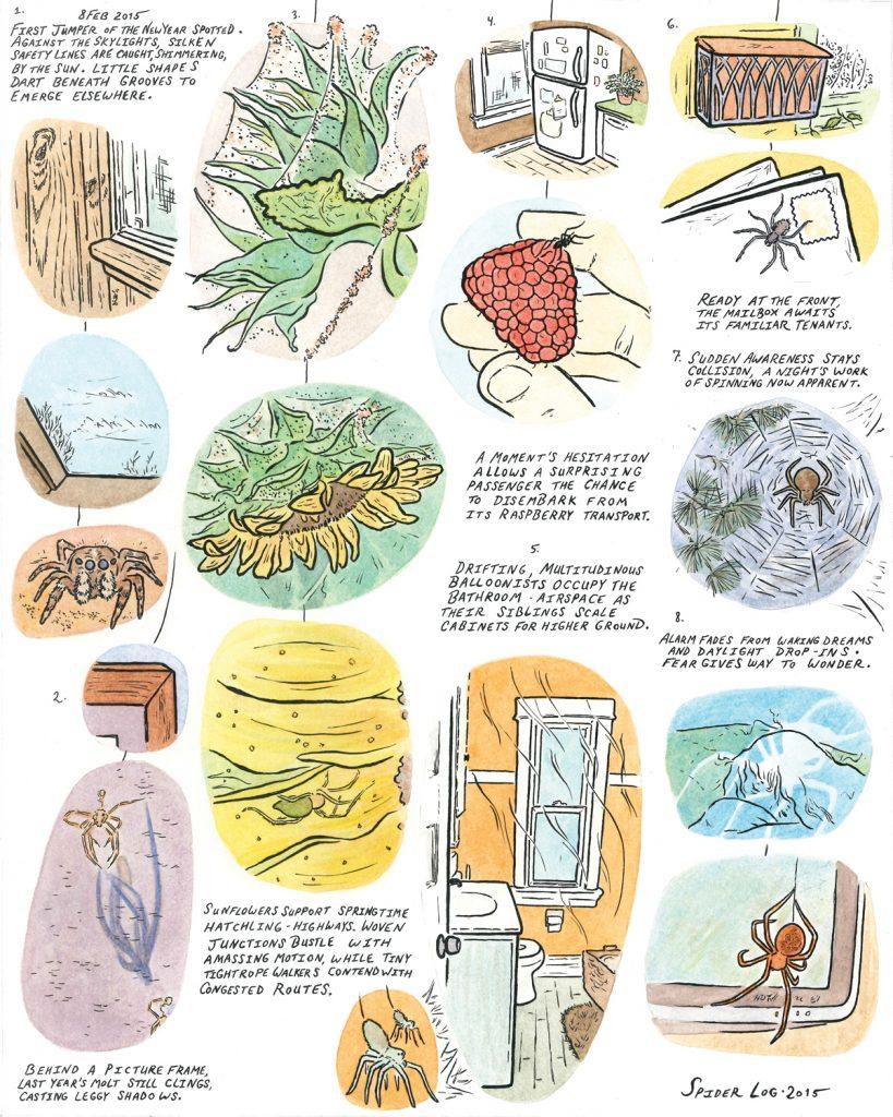 Spider Log_Angela_Caggiano_WEB